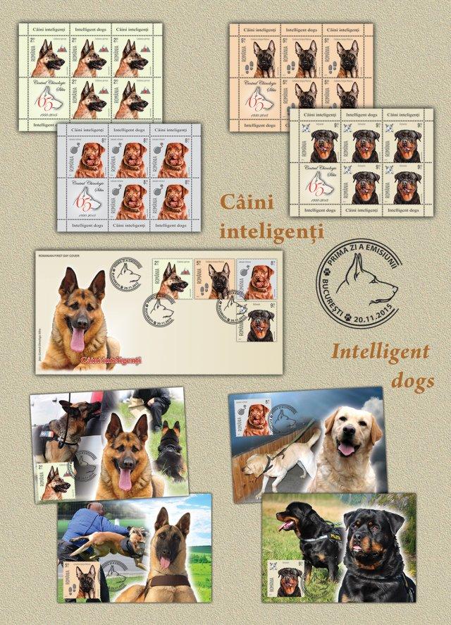 Câini inteligenţi