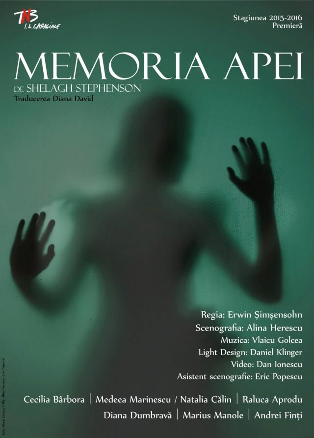 afis_memoria